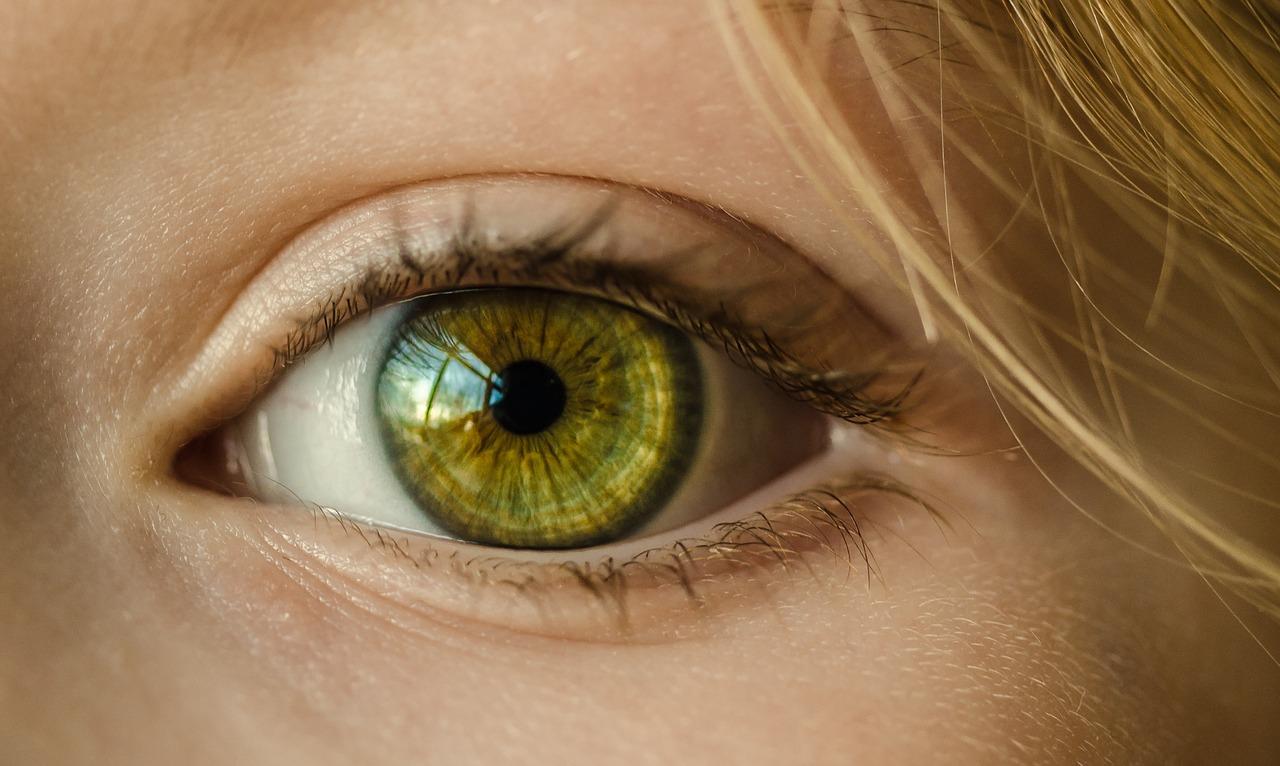 eye-1132531_1280
