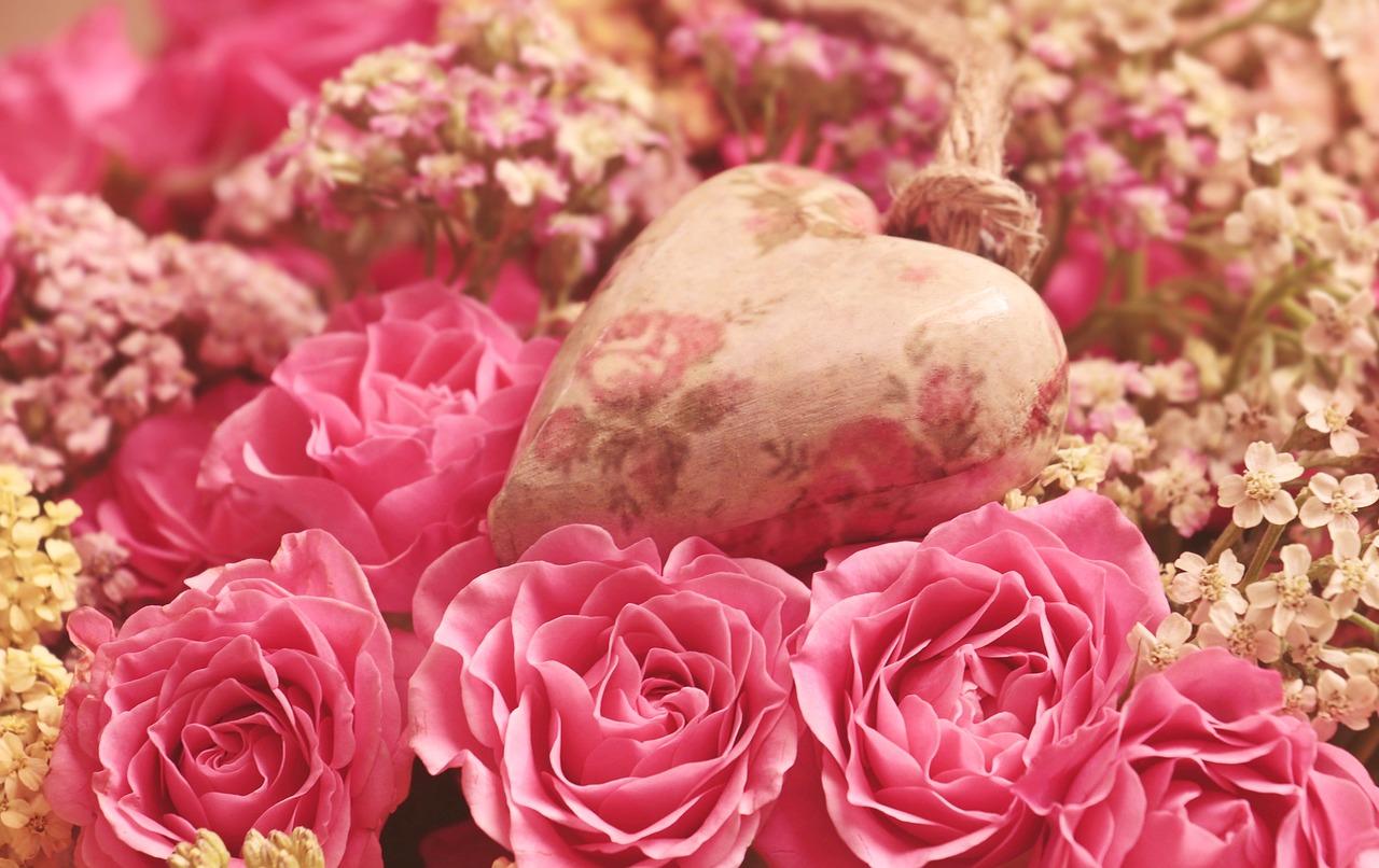 roses-3699995_1280 web