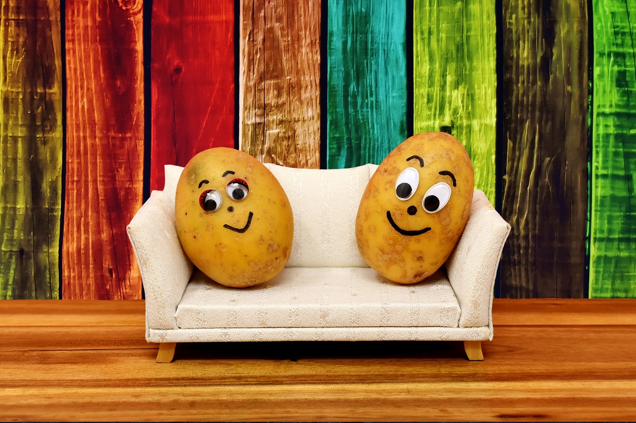 couch-potatoes-3119965_1280